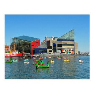 Baltimore aqaruim clipart clip art royalty free download National Aquarium In Baltimore Gifts on Zazzle clip art royalty free download