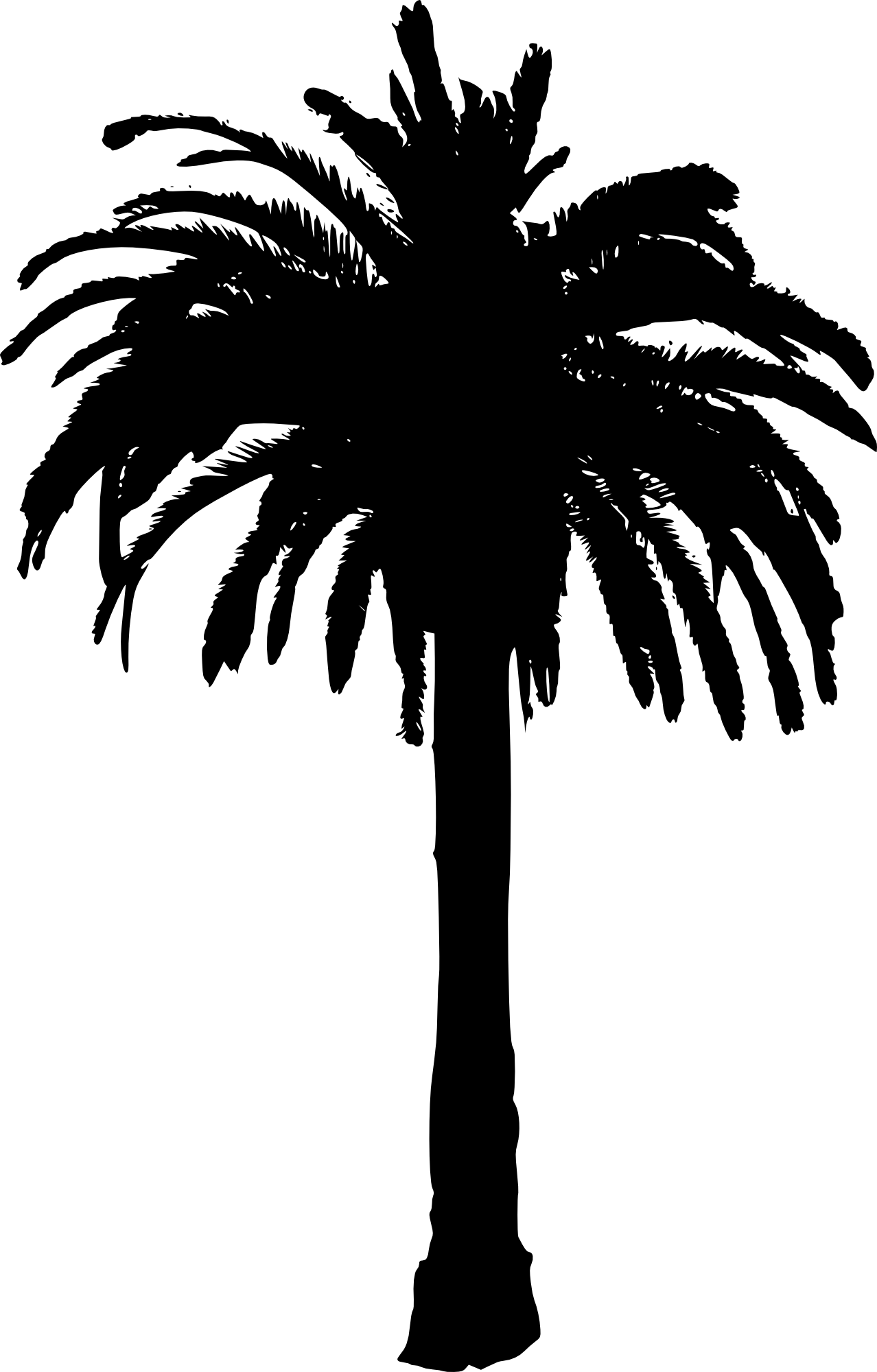 Palm tree silhouette clipart image transparent library Bamboo Forest Drawing at GetDrawings.com | Free for personal use ... image transparent library