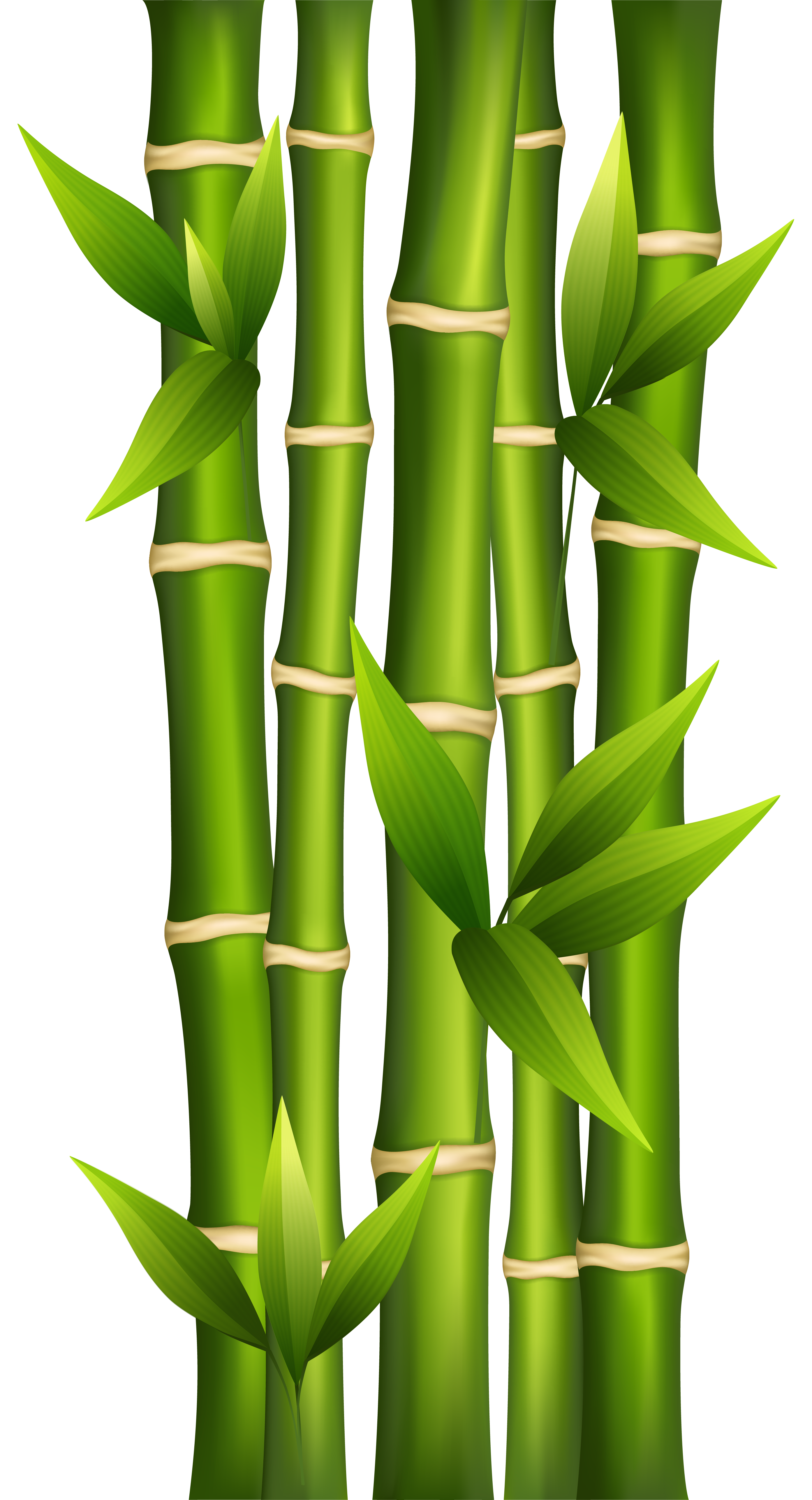 Bamboo house forest clipart picture library library 28+ Collection of Bamboo Clipart | High quality, free cliparts ... picture library library
