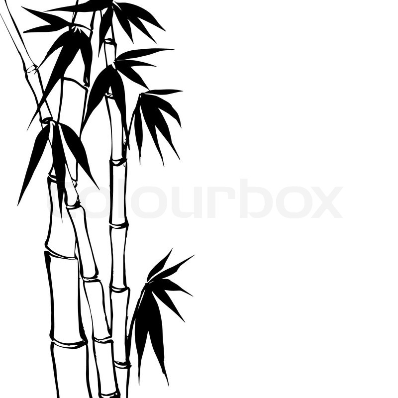 Bamboo stick bamboo clipart black and white vector stock Bamboo Tree Clipart Black And White vector stock