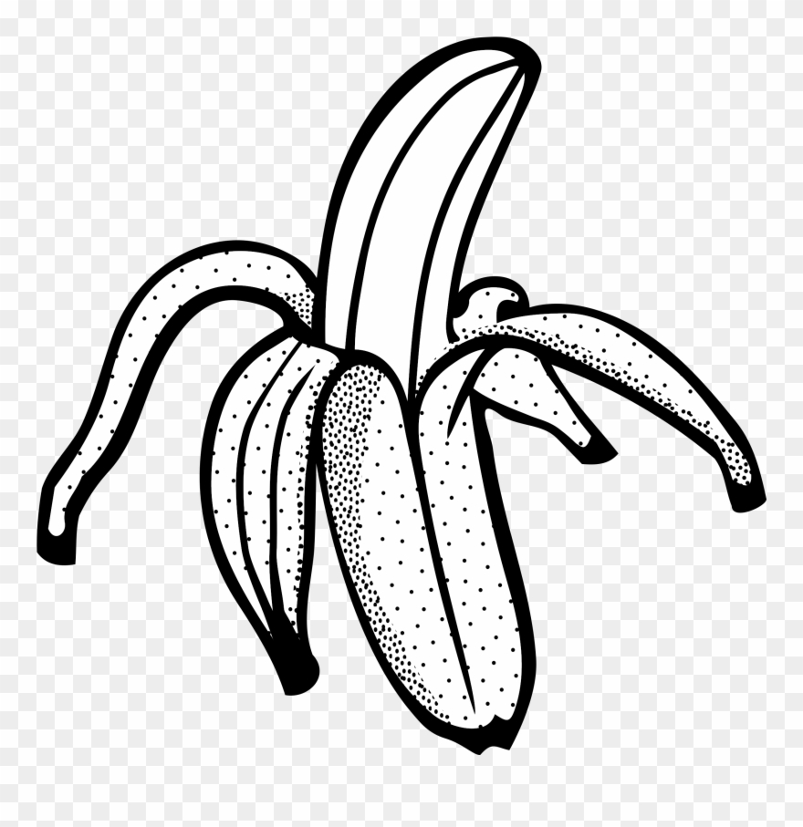 Banana black and white clipart svg freeuse download Banana Black And White Clipart - Banana Line Art Png Transparent Png ... svg freeuse download