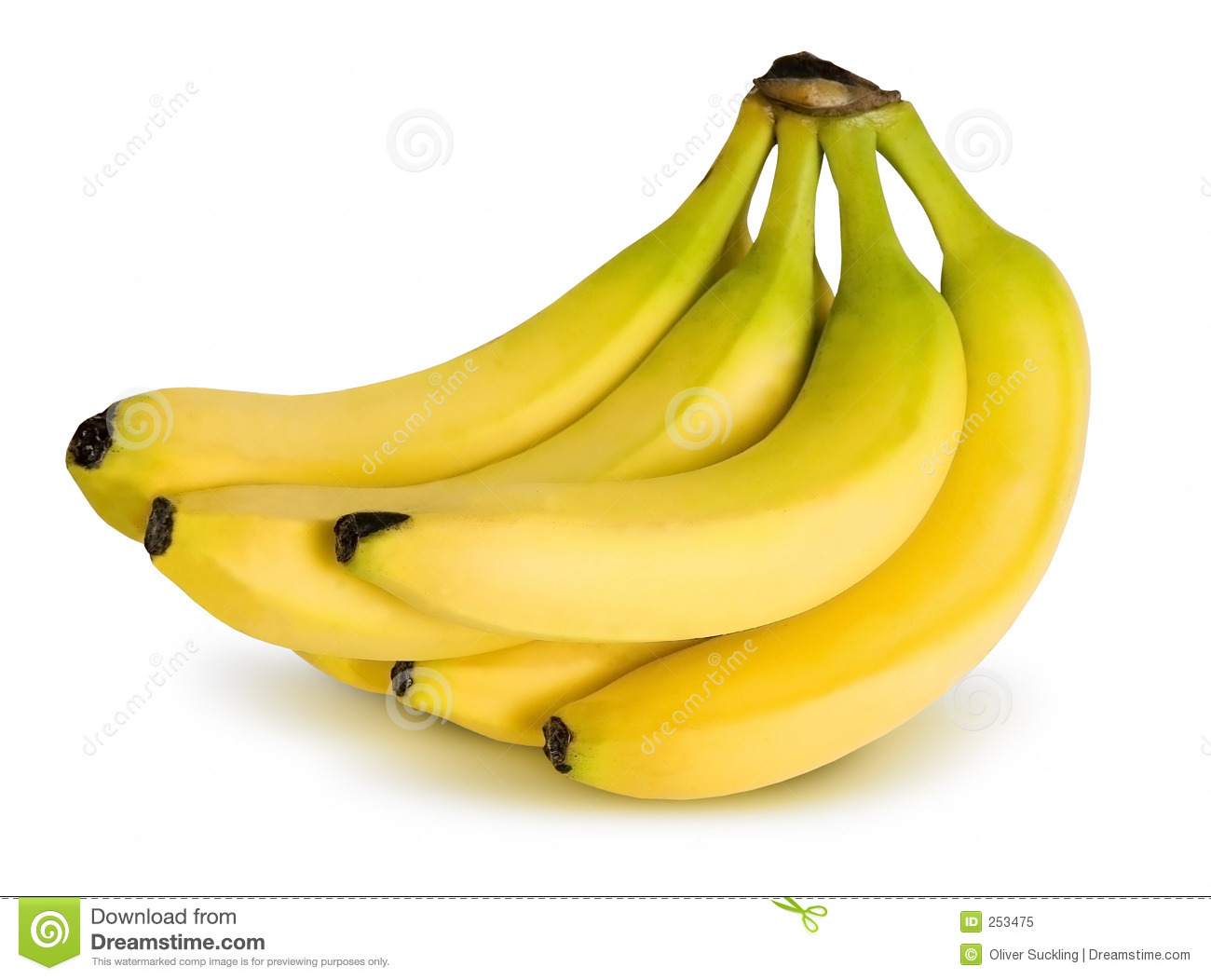 Banana bunches clipart vector library download Bunch Of Bananas Clipart | Free download best Bunch Of Bananas ... vector library download
