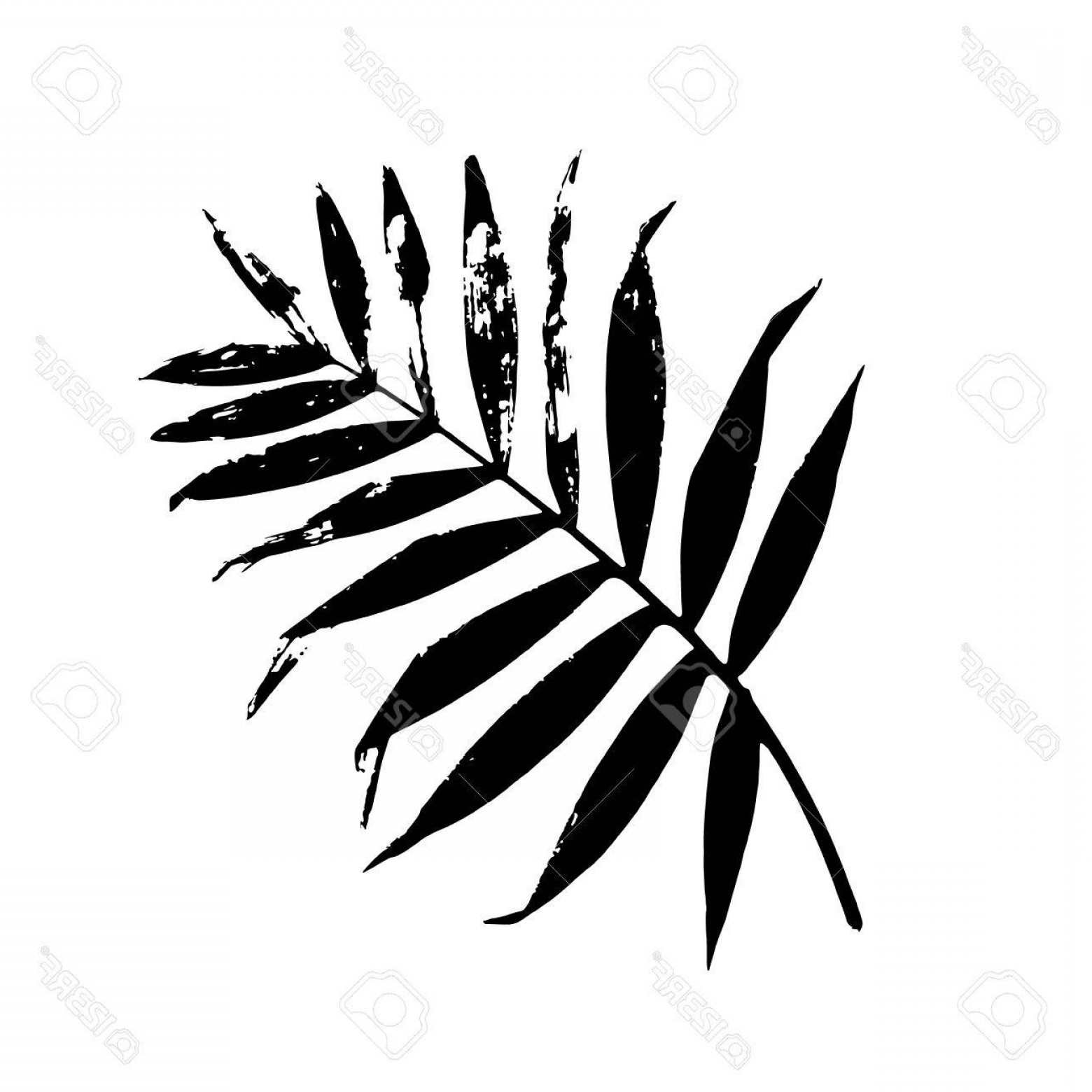 Banana leaf clipart black and white clip art royalty free stock Photostock Vector Palm Leaf Vector Illustration Black And White Palm ... clip art royalty free stock