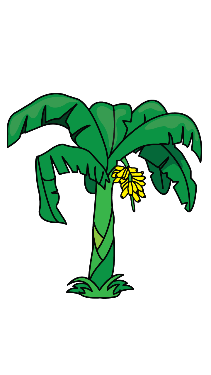 Banana tree clipart png transparent library Another tutorial in Flowers and plants category is a banana tree ... png transparent library