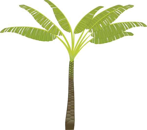 Banana tree clipart picture royalty free download Image of Banana Tree Clipart #3888, Free Banana Tree Cliparts ... picture royalty free download