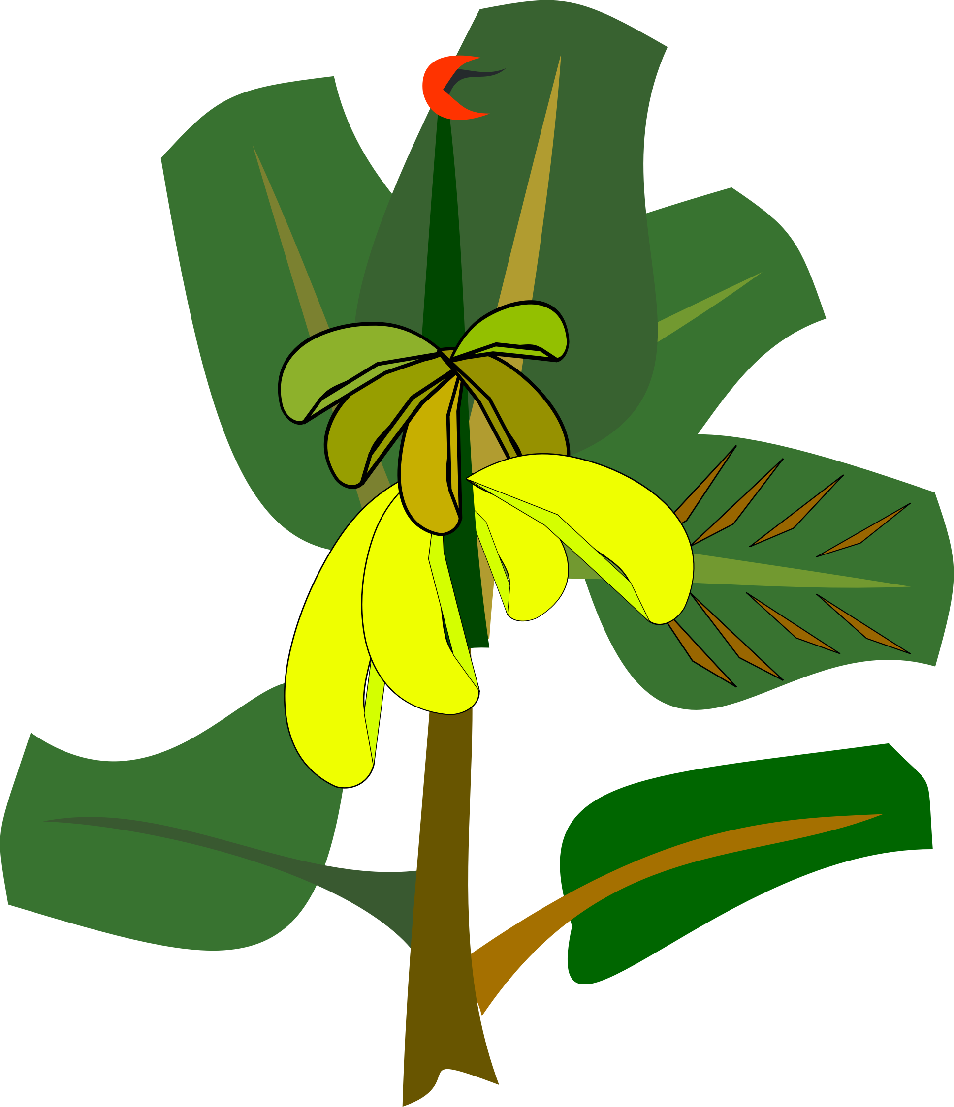Banana tree clipart png stock Clipart - bananas on the tree png stock