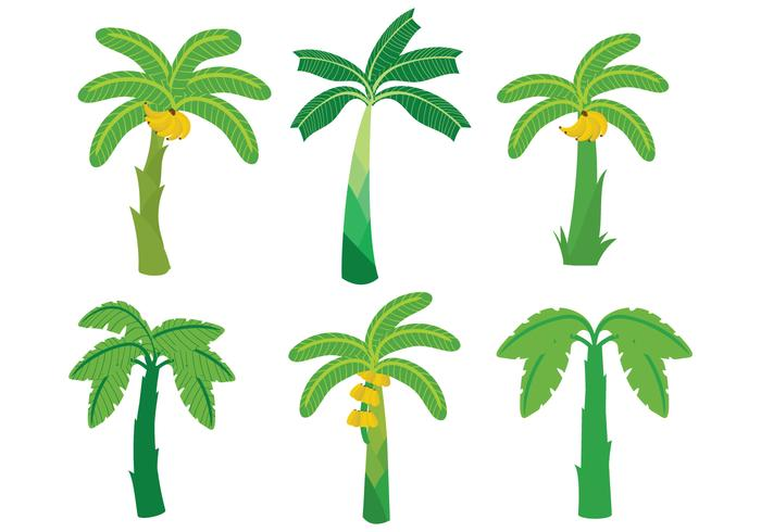 Banana tree vector clipart picture freeuse download Banana Tree Vector - Download Free Vector Art, Stock Graphics & Images picture freeuse download