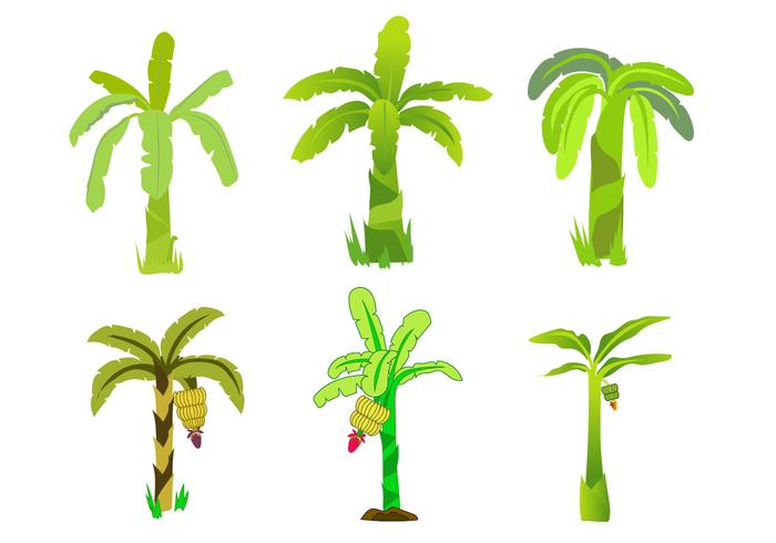 Banana tree vector clipart png freeuse Free Banana Tree Vector - Download Free Vector Art, Stock Graphics ... png freeuse