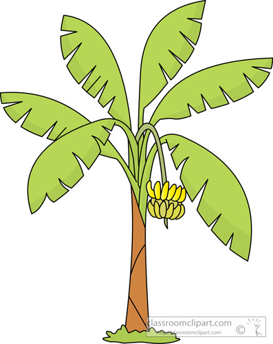 Banana trees pictures clipart svg royalty free stock Banana tree » Clipart Station svg royalty free stock