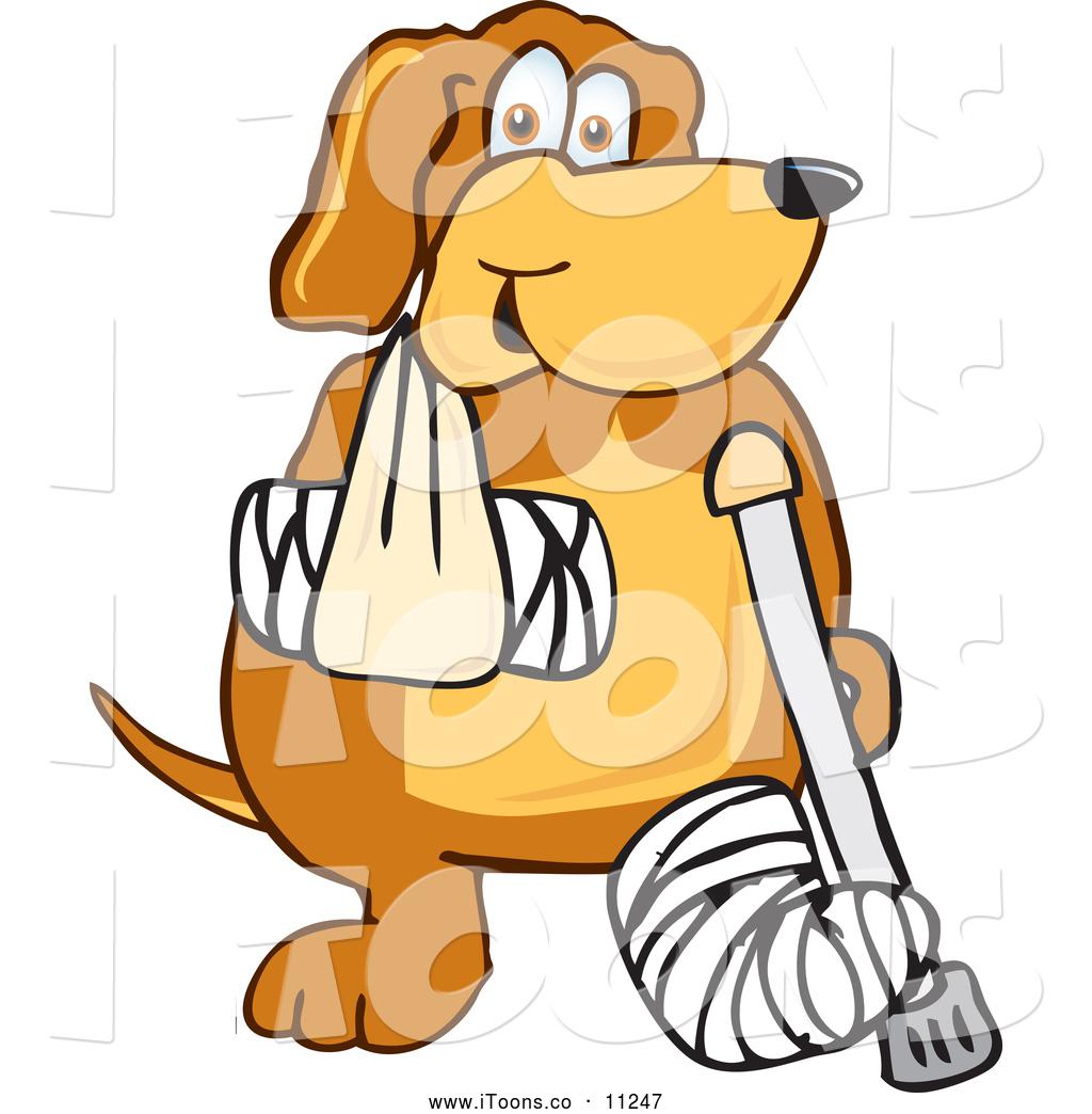 Bandage dog leg cartoon clipart jpg Injured Clipart   Free download best Injured Clipart on ClipArtMag.com jpg