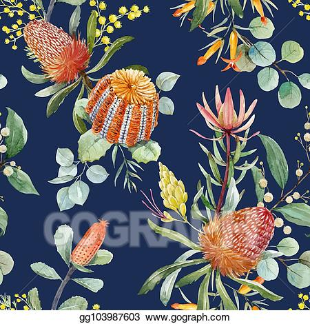 Banksia clipart banner black and white Vector Art - Watercolor australian banksia vector pattern. Clipart ... banner black and white