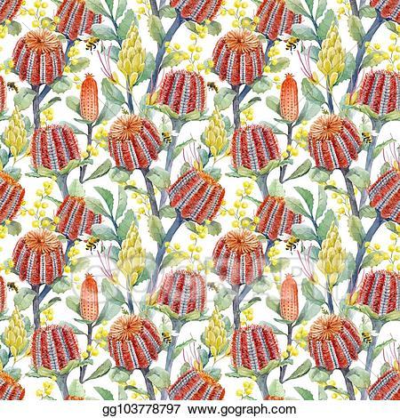 Banksia clipart transparent stock Vector Art - Watercolor australian banksia vector pattern. Clipart ... transparent stock