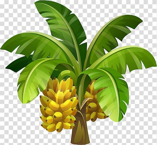 Bannana trees clipart graphic royalty free download Green and yellow banana tree illustration, Banana transparent ... graphic royalty free download