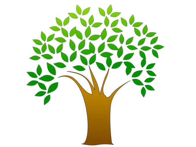 Banyan tree clipart clipart download images of tree | Siewalls.co clipart download