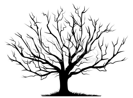 Bare oak tree clipart black and white clip black and white download Oak Tree Silhouette | Free download best Oak Tree Silhouette on ... clip black and white download