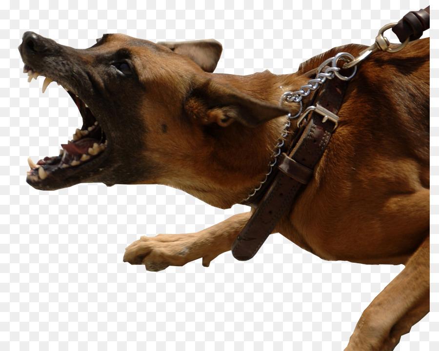 Barking german shepherd clipart vector download Cartoon Dog png download - 862*720 - Free Transparent German ... vector download