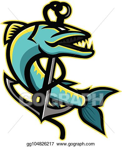 Barrcudda clipart picture library Vector Illustration - Barracuda-anchor-mascot. EPS Clipart ... picture library