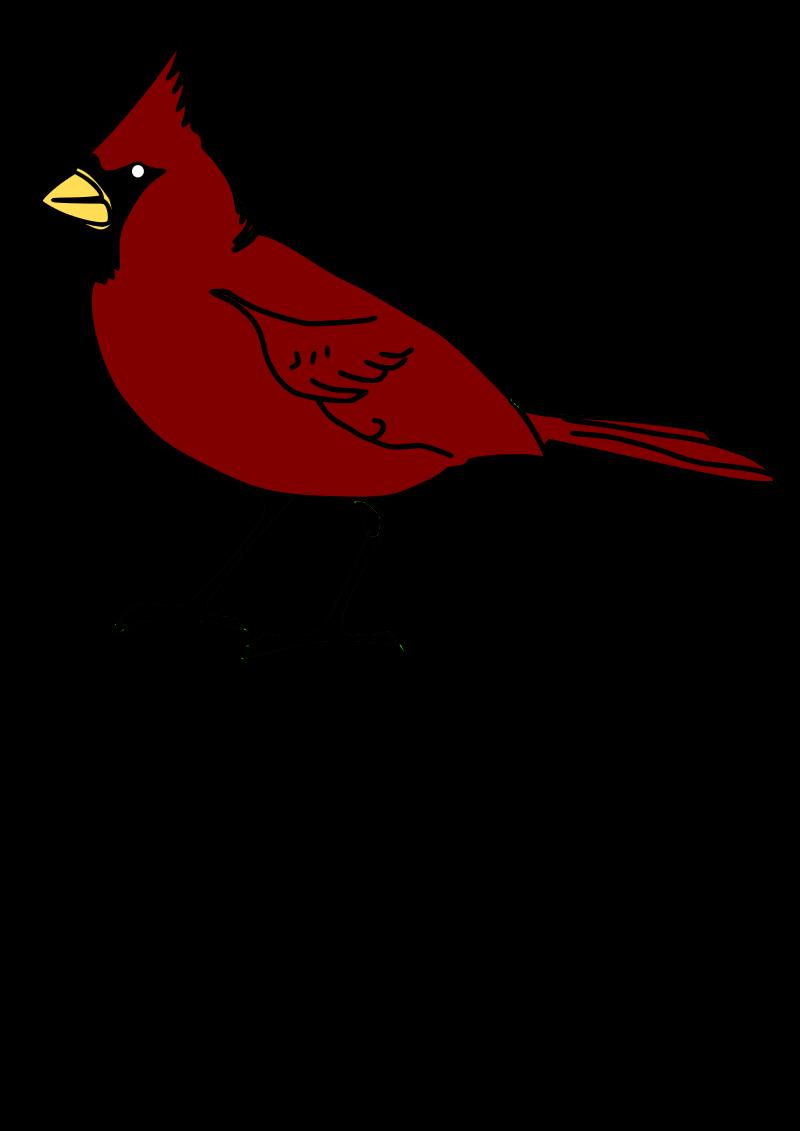 Cardinals baseball clipart clip art royalty free download Clipart - Cardinal clip art royalty free download