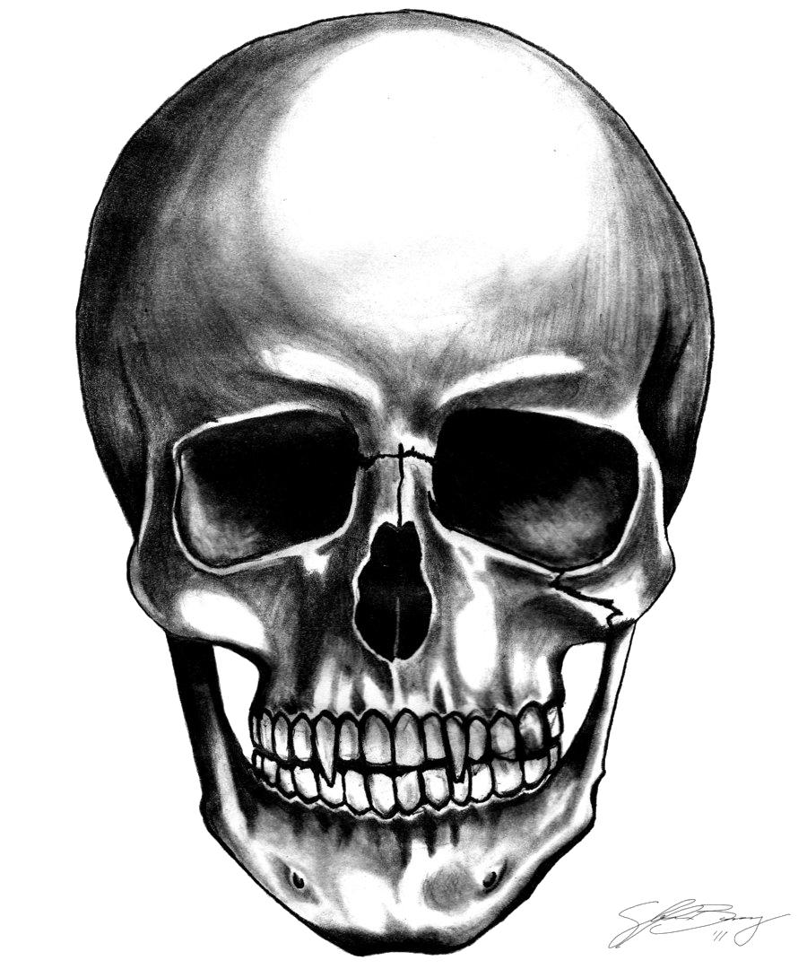 Baseball skull clipart vector royalty free stock Skulls PNG Image - PurePNG | Free transparent CC0 PNG Image Library vector royalty free stock