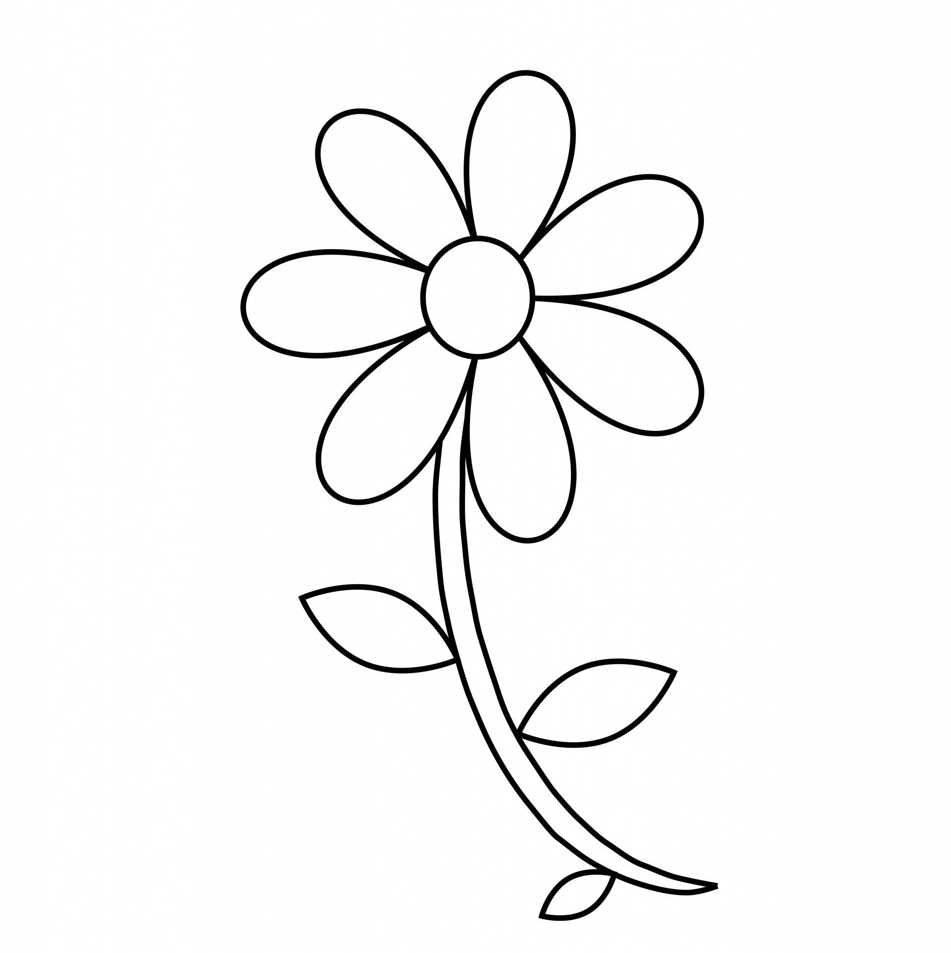 Free outline download clip. Flower clipart simple black and white