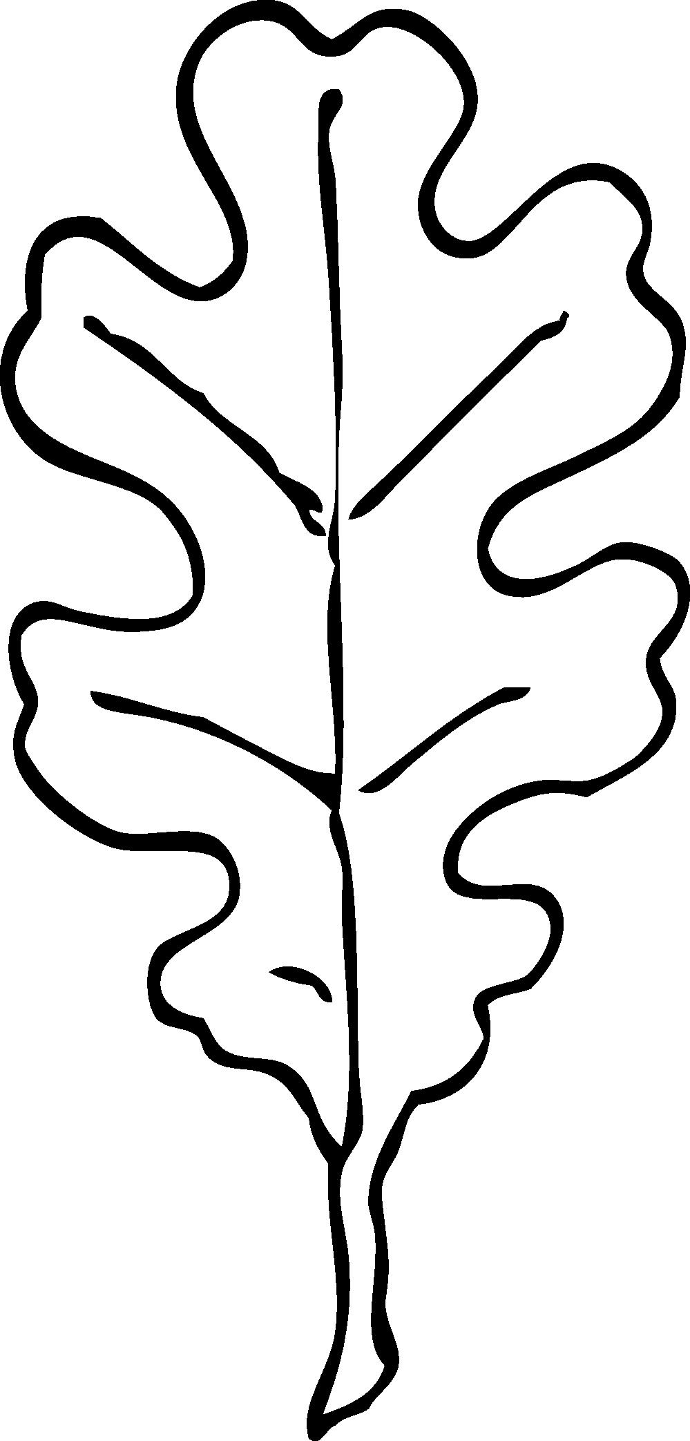 Basic black and white oak leaf clipart
