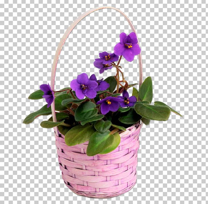 Basket full of pansies clipart image Pansy Violet Garden Chinese Wisteria Seed PNG, Clipart, African ... image