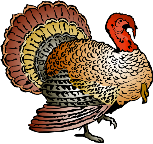 Thanksgiving turkey fitness clipart transparent library Turkey Clipart - Dr. Odd transparent library