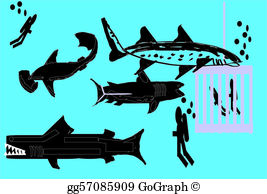 Basking shark clipart vector free download Basking Shark Clip Art - Royalty Free - GoGraph vector free download