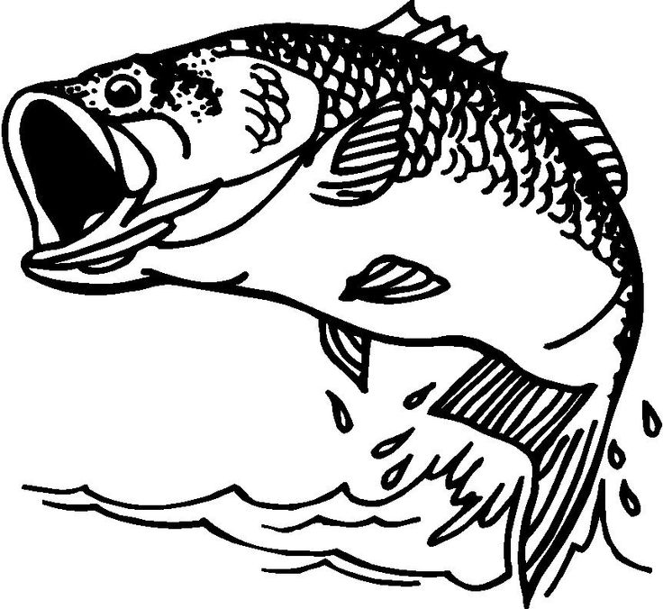 Bass fish outline clipart clip free stock Free Bass Fish Cliparts, Download Free Clip Art, Free Clip Art on ... clip free stock