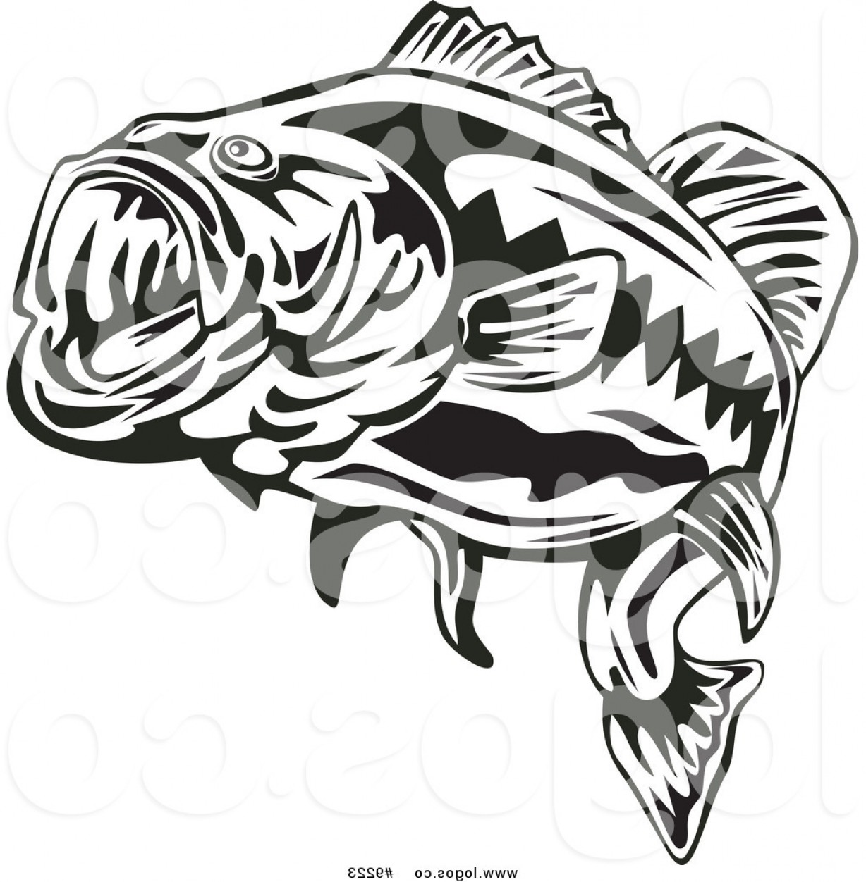 Royalty clip art vector. Free large mouth bass chasing a lure clipart