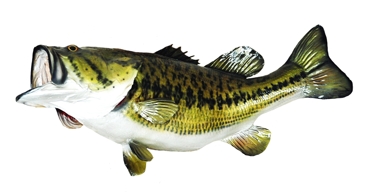 Big mouth bass fish clipart clip library stock Fish Clip Art clip library stock