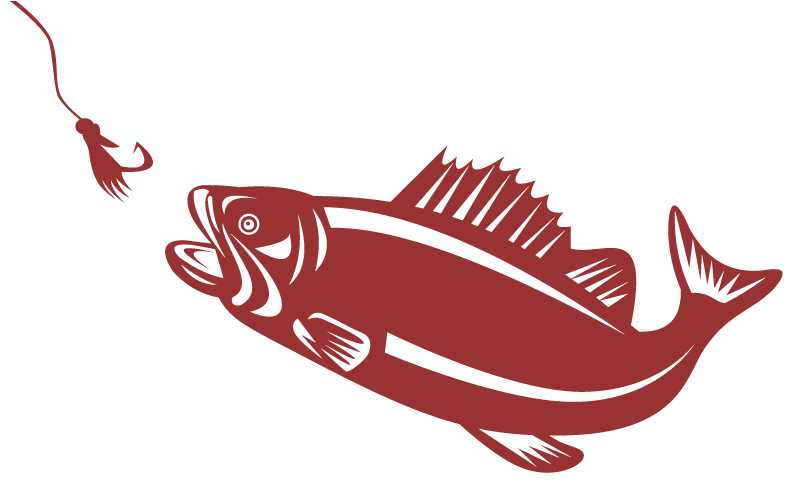 Big mouth bass fish clipart png transparent download Largemouth Bass Fly Fishing For Beginners - Fishing Tips - Midwest Flies png transparent download