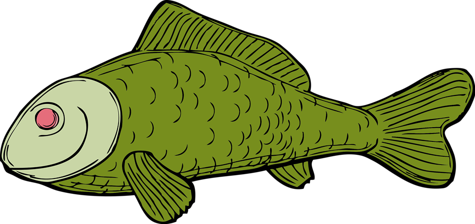 Fresh fish clipart jpg transparent library Fish | Free Stock Photo | Illustration of a green fish | # 10646 jpg transparent library