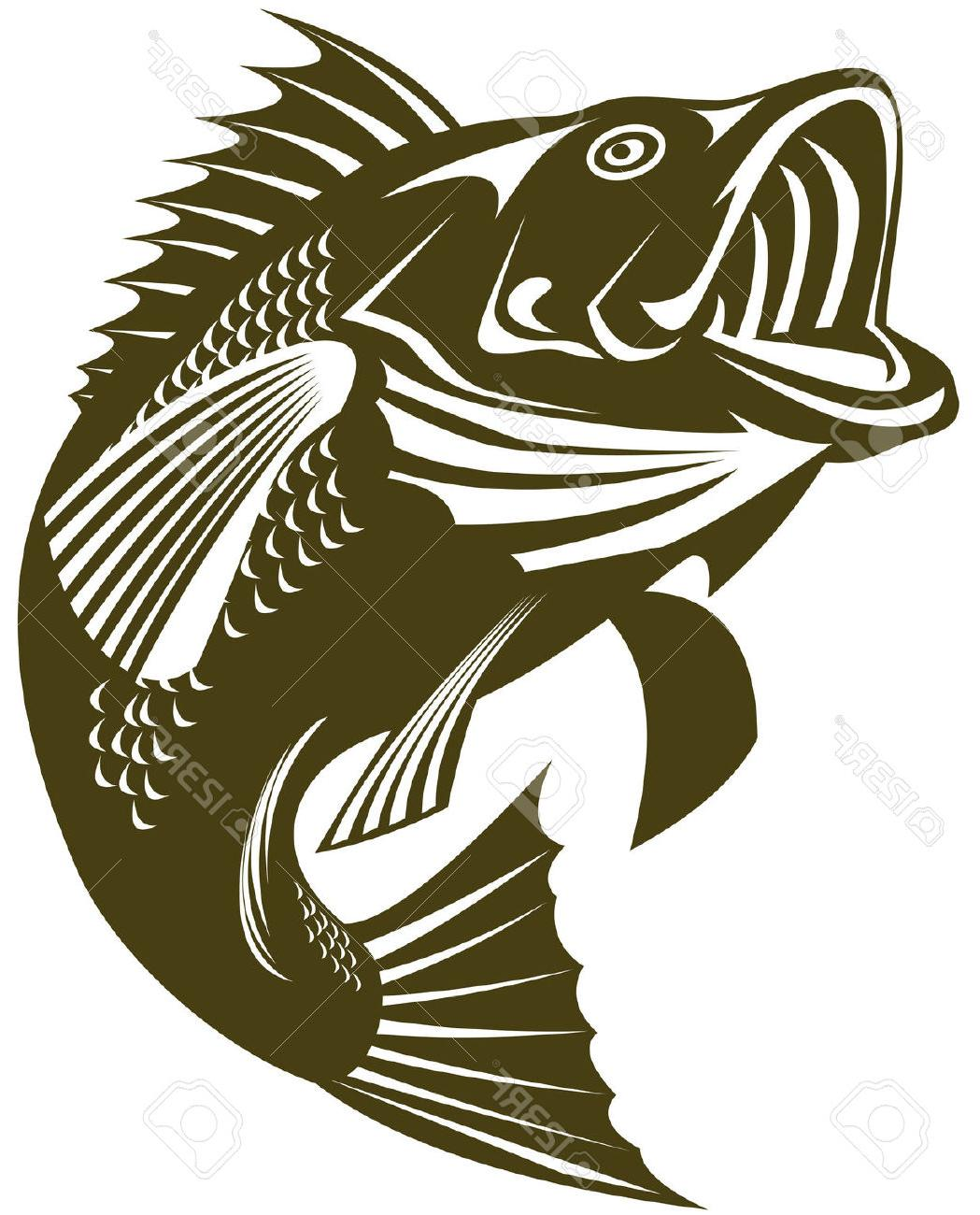 Bass fish outline clipart clip art freeuse stock Bass Fish Outline | Free download best Bass Fish Outline on ... clip art freeuse stock