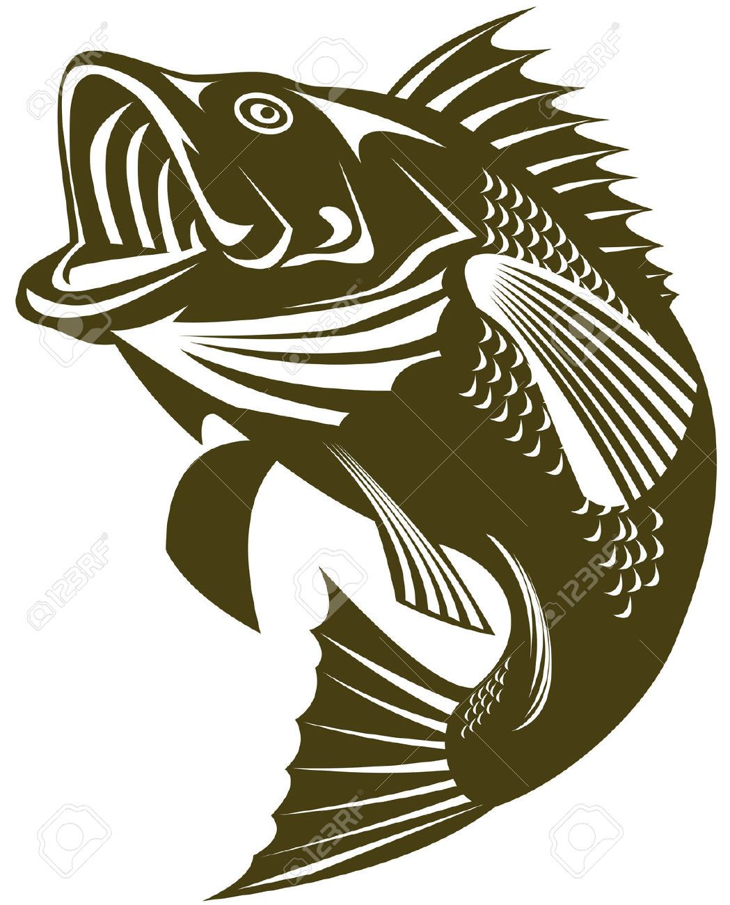 Free large mouth bass chasing a lure clipart. Largemouth cliparts stock vector