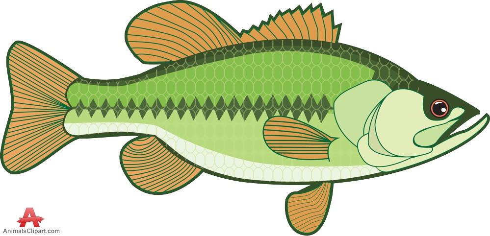 Bass fishing clipart banner Free Bass Fish Cliparts, Download Free Clip Art, Free Clip Art on ... banner