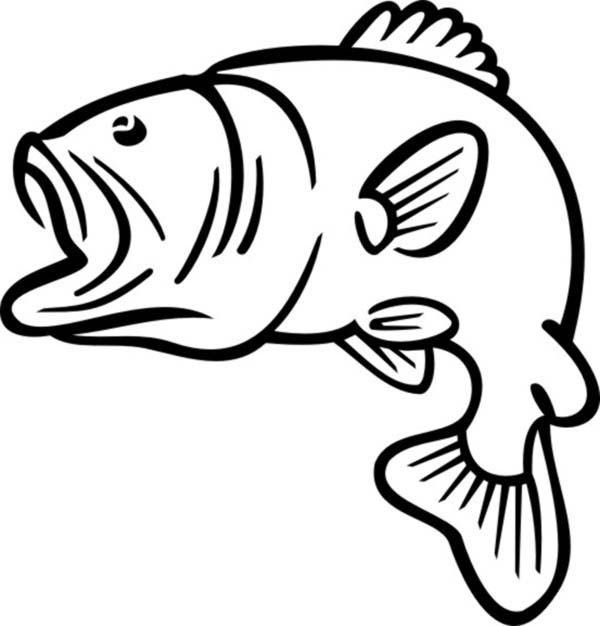 Bass outline coloring pages. Fish with different mouth shapes with color clipart