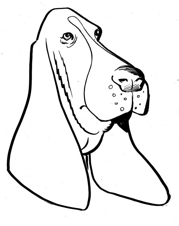 Basset hound clipart free back and white png download lots of Basset Hound Clipart (clipart panda) | crafts | Basset hound ... png download