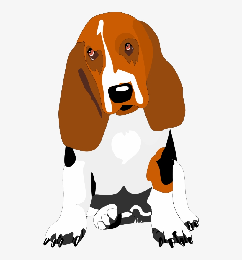 Basset hound clipart free download freeuse download Hound Basset Clipart Transparent PNG - 526x800 - Free Download on ... freeuse download
