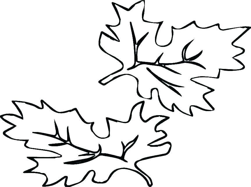 Basswood leaf clipart abstract coloring svg royalty free library Collection of Autumn leaves clipart | Free download best Autumn ... svg royalty free library