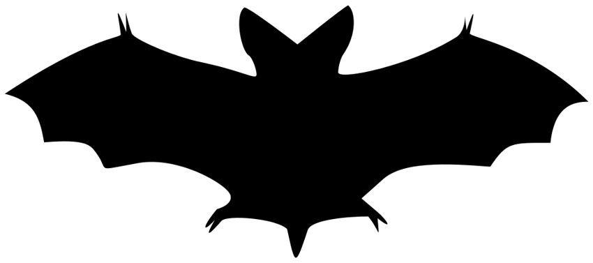 Bat clipart pictures clip 12 Bat Images - Vintage Halloween! | art stuff | Halloween bats ... clip