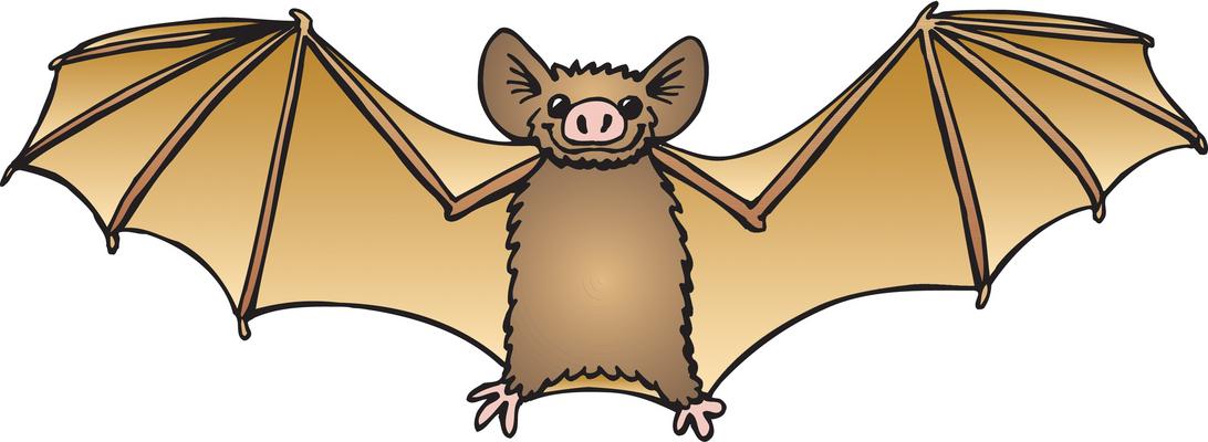 Bat clipart pictures graphic free download Bat clipart free images 6 - ClipartPost graphic free download