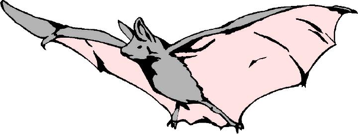 Bat realistic clipart vector library stock Bat clip art realistic - 179 transparent clip arts, images and ... vector library stock