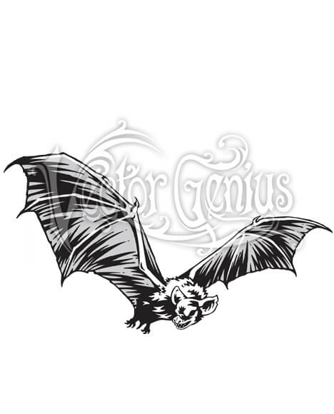 Bat realistic clipart picture library stock Realistic Flying Bat Stock Art picture library stock
