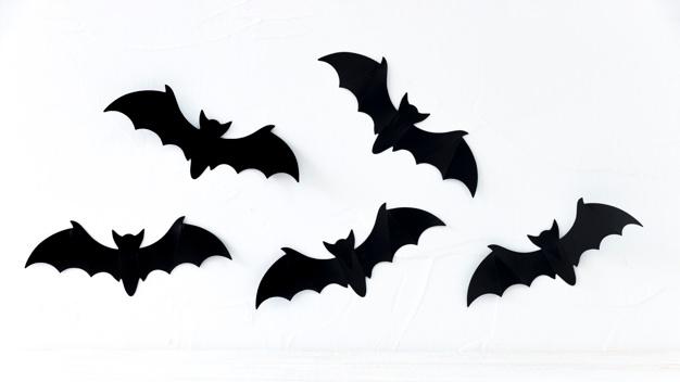 Bat vector clipart