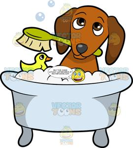 Bath dog clipart png freeuse stock A Shy Dog Taking A Bath png freeuse stock