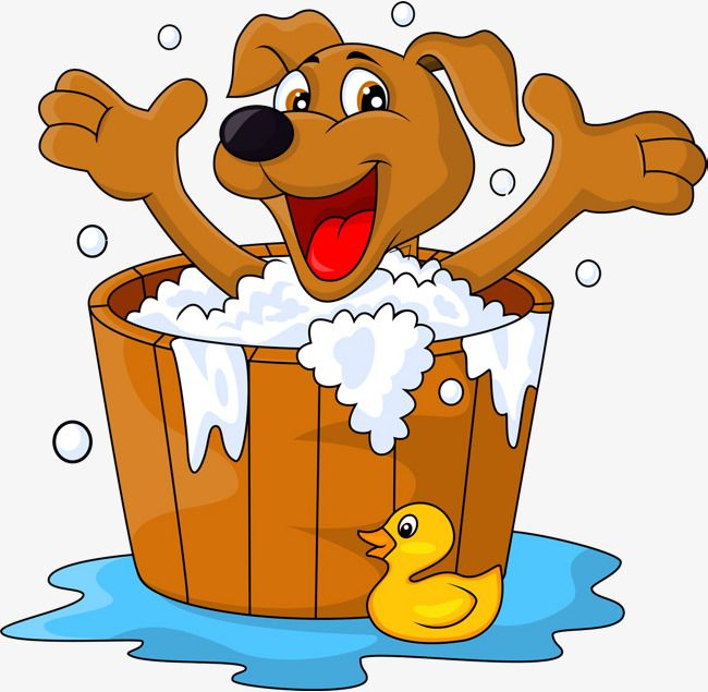 Taking a dog out clipart jpg library stock The Bathtub Dogs, Bathtub Clipart, Take A Shower, Bath PNG ... jpg library stock