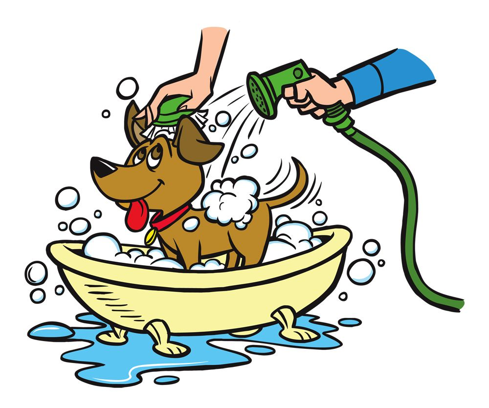 Bath dog clipart free PetHealth™ Hypoallergenic Shampoo | Pets that Your Love | Dog ... free