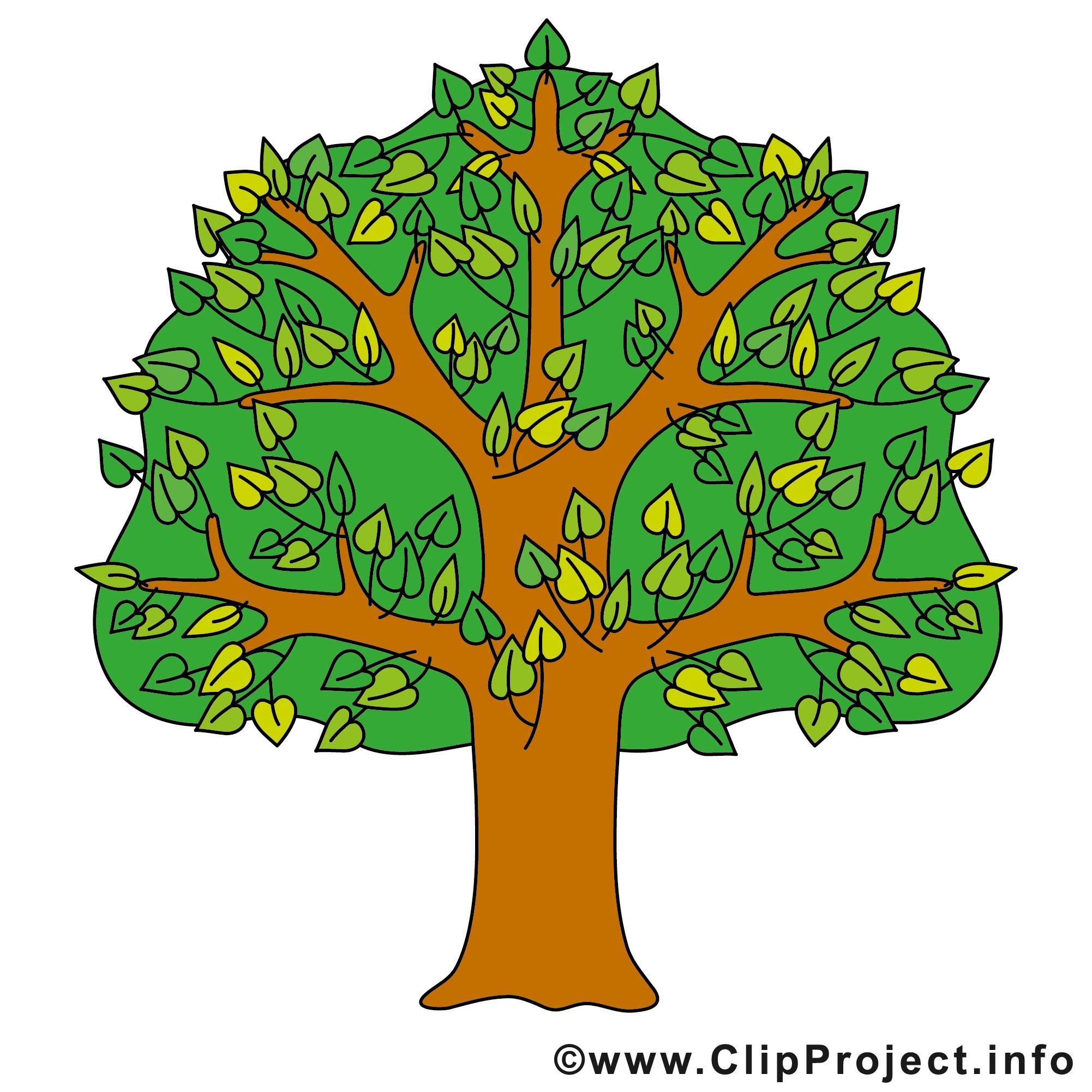 Free clipartfest sommer cliparts. Baum clipart kostenlos