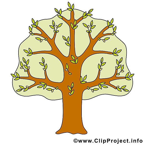 Baum clipart kostenlos.